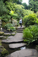 Jungle (bigbluewolf) Tags: nikon d7000 biddulph grange nationaltrust national trust nt garden gardens sigma 18250 18250mm