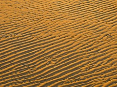 More golden hour images (PsJeremy) Tags: goldenhour ripples sanddunes