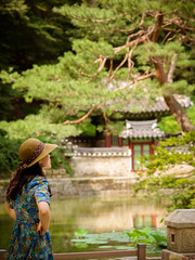 "The secret garden Seoul • <a style=""font-size:0.8em;"" href=""http://www.flickr.com/photos/44919156@N00/28912898313/"" target=""_blank"">View on Flickr</a>"