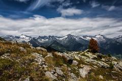 Zillertaler Hauptkamm (Frick Turnerstick) Tags: italien italy südtirol altoadige alpen gebirge berg mountains natur nature landschaft landscape zillertaleralpen speikboden