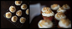 In a Sunday afternoon (pierfrancescacasadio) Tags: kitchen cupcake cucina mandorle