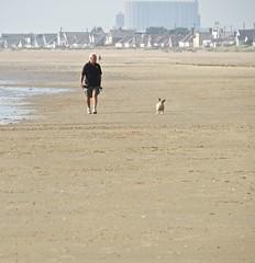 3451 Walking his dog (Andy - Daft as a brush - don't ask!) Tags: 20160816 beach ddd dog dogwalker kent littlestoneonsea sand sss www