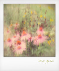 Autumn garden. (jeanne.marie.) Tags: retro faded slowshutter intentionalcameramovement pastel iphone5s iphoneography instant icm blur garden flowers autumn