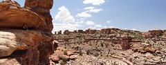 Big Spring Canyon Overlook (Tjflex2) Tags: bigspringcanyonoverlook canyonlandsnationalpark utah rhiannon