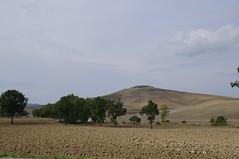 IMGP1590 : Au sud de Sienne - Siena (vince_68) Tags: florence italia tuscany firenze siena toscana toscane