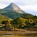 Landscape del Fuego