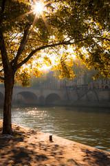Seine in the morninglight (Jaap Coorens) Tags: sun paris water seine licht kade boom zon parijs rivier