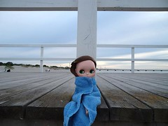 Miss Dolly visits the sea (last)