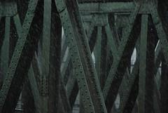 Summer 2012 (Scilla sinensis) Tags: bridge summer green rain metal drops hamburg veddel genauwieletztesjahr
