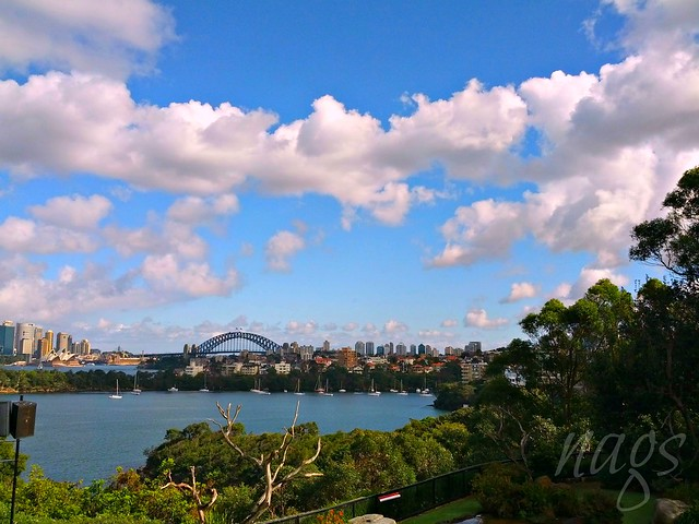 Gorgeous Sydney