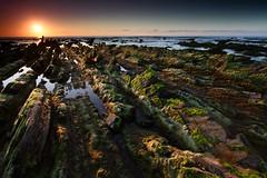 IMG_1585 (Custom) (manuel.cacheiro) Tags: beach country playa bizkaia basque vasco euskadi vizcaya pais euskal herria hondartza barrika biscay
