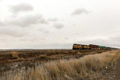 Cactus 001 (Cycle the Ghost Round) Tags: newmexico nm unionpacific up railroad train tracks engine frieght cloudy overcast southwest plains perspective lonely isolated grand