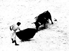 Juan Del Alamo (aficion2012) Tags: arles francia france paques 2016 corrida bull fight bulls toro toreau torero toreador matador juan del alamo monochrome bw duotone cite muleta pedrazasdeyeltes pedrazas