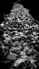 Rocky Road (Gold Element Photography) Tags: hard road blackandwhite path stones trail rocks