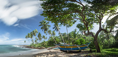 Goyambokka, Sri Lanka (JoshyWindsor) Tags: sunny landscape canonef1740mmf4l srilanka canoneos6d goyambokka southcoast beach ocean scenic nature outriggercanoe panorama palmtrees holiday tropical canoe