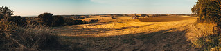 Panorama champs du Tarn