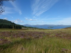 Loch Lomond, viewed from Darleith Muir (luckypenguin) Tags: scotland lochlomond helensburgh balloch johnmuirway