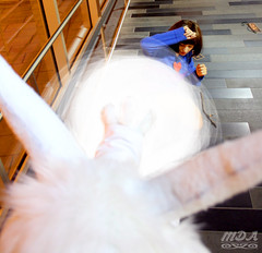 Undertale 72 (MDA Cosplay Photography) Tags: undertale frisk chara napstablook asriel cosplay costume photoshoot otakuthon 2016 montreal quebec canada undertalecosplay fun