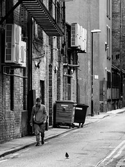 Northern Quarter #118 (Peter.Bartlett) Tags: manchester niksilverefex dumpster wall backpiccadilly unitedkingdom walking people urbanarte city doorway monochrome drainpipe olympuspenf bin streetphotography lunaphoto man urban peterbartlett candid uk m43 microfourthirds noiretblanc bw backstreets sign blackandwhite hat doubleyellowlines