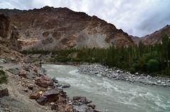 I n d u s (_Amritash_) Tags: indus indusriver river himalayas himalayanlandscape lunarlandscape greens landscapes landscape sindhū sindhu sindhūriver abāsīn ladakh travel travelindia india