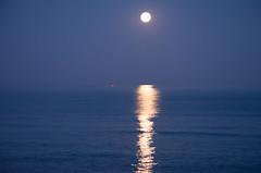he pescado la luna (alfonsovalgar) Tags: pesquero luna llena septiembre torremolinos playamar nikon d5200 retoque lightroom espaa