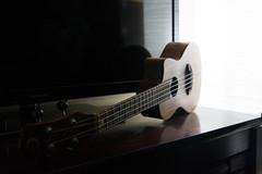 jWAGNER_DirectLight.jpg (Jackson Wagner) Tags: hardlight ukulele