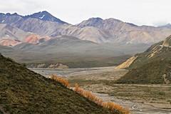 Denali NP ~ Polychrome Basin (karma (Karen)) Tags: denalinp alaska tundrawildernesstour usparks mountains glacierrivers fallcolor erosion topf25