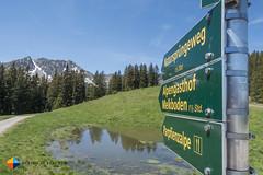 That way (HendrikMorkel) Tags: austria family sterreich bregenzerwald vorarlberg sonyrx100iv mountains alps alpen berge natursprngewegbrandnertal