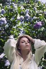 Lilac (meryeta) Tags: beauty spring lilac fliwer