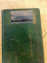 IMG_0563 (Rowayton Library) Tags: cagnina