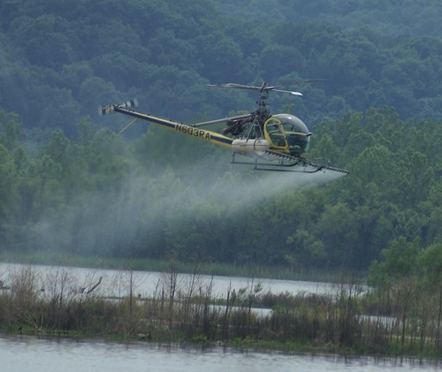 oklahoma nature helicopter environment arkansas habitat epa navigationsystem usace usarmycorpsofengineers herbicide endangeredbirds tulsadistrict mcclellankerrarkansasriver