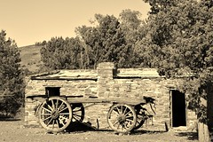 History of agriculture History of agricultureand farming in the Flinders #2 (robynbrody) Tags: light building history sepia rural buildings landscape geotagged bush ruins rocks farm ruin australia historic farms southaustralia flindersranges dwellings wilpenapound wilpena
