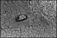 I was walking on the moon (TheOtherPerspective78) Tags: moon macro rock stone canon sand desert earth dry surface pebble drought stein wste trocken erde kiesel oberflche steinchen trockenheit kieselstein trockenrisse ef5025 theotherperspective78