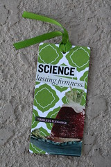 """Science, Lasting Firmness"" - Congealed Salad Gift Tag Set (2/4) (Martha Merry) Tags: original strange collage salad martha handmade tag gift merry jello congealed gifttag marthamerry"