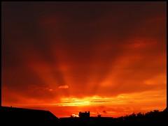Mlheim (abudulla.saheem) Tags: sunset sky sun house clouds germany deutschland lumix sonnenuntergang himmel wolken haus panasonic nrw redsky sunrays sonne ruhrgebiet sonnenstrahlen sunbeams roterhimmel ruhrarea ruhrpott mlheim flickrphotoaward abudullasaheem dmctz31