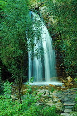 Second Falls - Waterfall Gully (Thielzy) Tags: nature water waterfall rocks parks falls