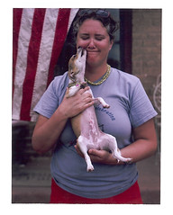 hazel belly (EllenJo) Tags: dog home me yard puppy polaroid fuji july americanflag 4thofjuly spayed smooch 2012 pathfinder 8monthsold chihuahuamix instantfilm photobychad fujifp100c puppykiss ellenjo surgeryscar bornin1972 ellenjoroberts bornin2011