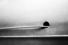 Introversion (belleshaw) Tags: blackandwhite metal hole wires 50mmf18 seattlewa