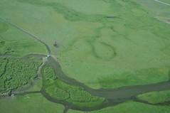 MVF_HFK_AER_062309_00471 (BlueCloudSpatial) Tags: usa river nikon aerial caldera aerialphoto 2009 ecosystem lighthawk aerialphotograph coldwater d300 baseline mvf iphotooriginal jtm henrysfork henryslake aerialpictures macrophytes june2009 october2009 062309 tommcmurray henryslaketoislandparkdam marineventuresfoundation hffbluecloud1492 hffbluecloud bluecloudmaster1492