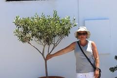 Santorini Griekenland juli 2012 242