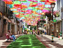 umbrellas & summer (* Patrcia *) Tags: street pink blue shadow red summer sky orange sun color verde green art portugal lamp azul umbrella bench fun laranja rosa cu vermelho cor parapluie gueda guardachuva