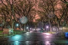 The Mall in Central Park at night HDR (Dave DiCello) Tags: newyorkcity newyork photoshop nikon centralpark manhattan tripod newyorkskyline empirestatebuilding nikkor hdr highdynamicrange nycskyline cs4 7worldtradecenter photomatix tonemapped colorefex cs5 d700 themallincentralpark davedicello hdrexposed
