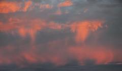 Blick aus meinem Fenster - Regen bei Sonnenaufgang; Bergenhusen, Stapelholm (5) (Chironius) Tags: stapelholm bergenhusen schleswigholstein deutschland germany allemagne alemania germania    ogie pomie szlezwigholsztyn niemcy pomienie rot morgendmmerung sonnenaufgang morgengrauen  morgen morning dawn sunrise matin aube mattina alba ochtend dageraad zonsopgang   amanecer morgens dmmerung wolken clouds wolke nube nuvole sky nuage  himmel ciel cielo hemel  gkyz