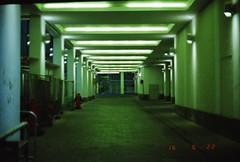 Natural Lighting (Mister.Marken) Tags: kodacolor kodakfilm nikonfg