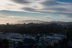 Golden Gate Park View - UCSF Medical Center - San Francisco - California - 13 June 2016 (goatlockerguns) Tags: sunset disctrict view ucsf medical center san francisco california usa unitedstatesofamerica west coast coastal urban city nature natural bayarea goldengatepark