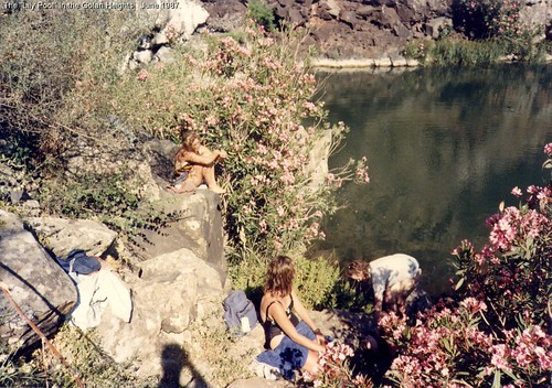 """The """"Lily Pool"""" in the Golan Heights.  June 1987."""