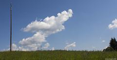 ... (LilFr38) Tags: lilfr38 canoneos5dmarkii canonef1740mmf4lusm aveyron france sky cloud grass ciel nuage herbe twiceashardinterpol