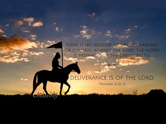 Proverbs 21-30-31 (Asel John) Tags: aseljohn proverbs213031 horse bibleverse silhouette bible black thereisnowisdomorunderstandingorcounselagainstthelordthehorseispreparedforthedayofbattle butdeliveranceisofthelord