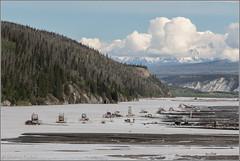Fish wheels on the Copper River (Stephen Fischer) Tags: alaska copperriver wrangellsainteliasnationalpark fishwheels fishtraps salmonfishing