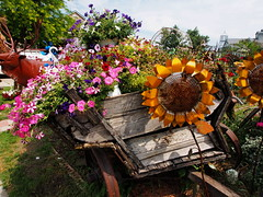 P6080786 (photos-by-sherm) Tags: good quilts retail garden flowers sculpture yard accessories amana iowa summer decorations metal
